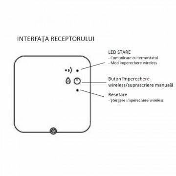 Poza Interfata receptor